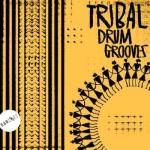 Tribal Drum Grooves Cover Raw Loops